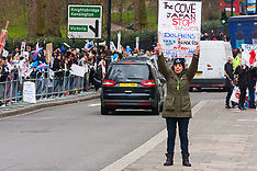 2015-02-20 Protest against Japanese slaughter of dolphins in Taiji Cove