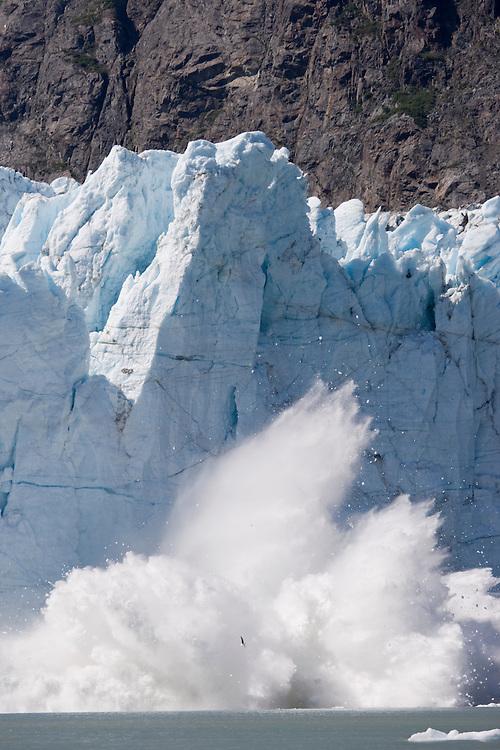 USA, Alaska, Glacier Bay National Park, Icebergs calve with explosive splash from Margerie Glacier in Tarr Inlet on summer morning