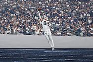 Jason Witten # 82 Dallas Cowboys.<br /> Photo by Tom Hauck.