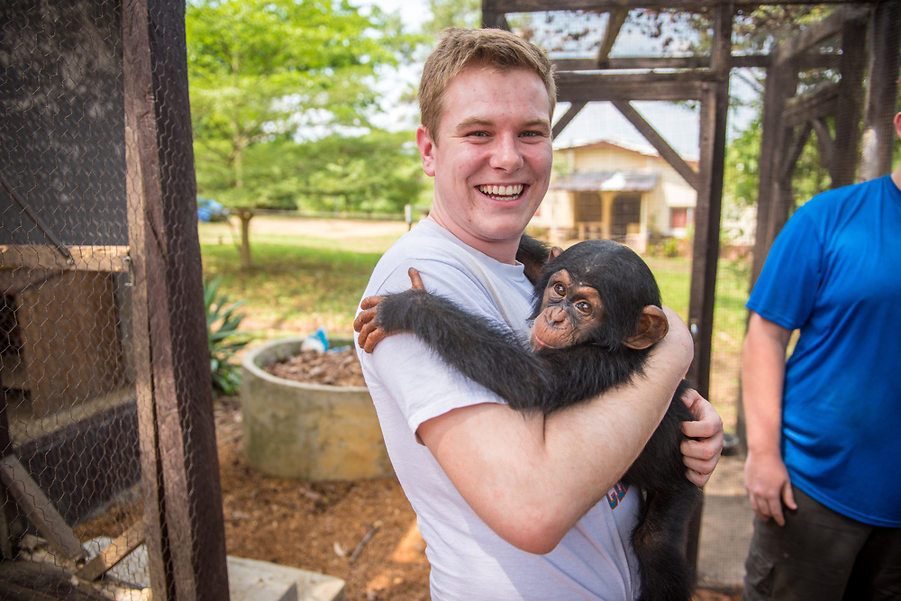 Young adult man smiles while hugging chimpanzee (Pan troglodytes). Ganta Liberia