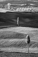 Infra Red Black & White view of agricultural fields after harvest, near Pienza, Italy, Tuscany