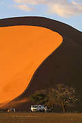 NAMIBIA, NAMIB DESERT..Namib Naukluft Park. Dune 45 near Sossusvlei at sunrise..(Photo by Heimo Aga)