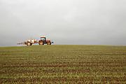 Red tractor spraying hillside field arable crop overcast sky, Suffolk, England, UK