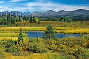 autumn scenic with St. Elias Mountains <br /> Kluane NAtional Park<br /> Yukon<br /> Canada