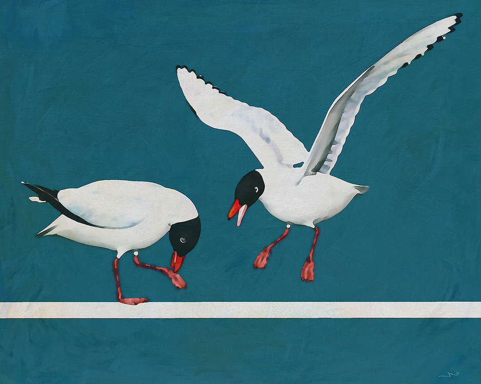 When we look upon this scene, as depicted by the brilliant artist Jan Keteleer, we see a Black Headed Gull coming towards us. We can imagine looking out the window and being able to take in such a scene with our own eyes. You can imagine the tranquility of seeing this bird on a beautiful day by the ocean. This is a seaside visual. -<br />