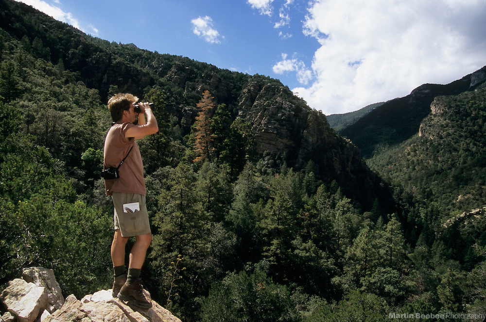 Hiker birding in Ramsey Canyon, Coronado National Forest, Arizona