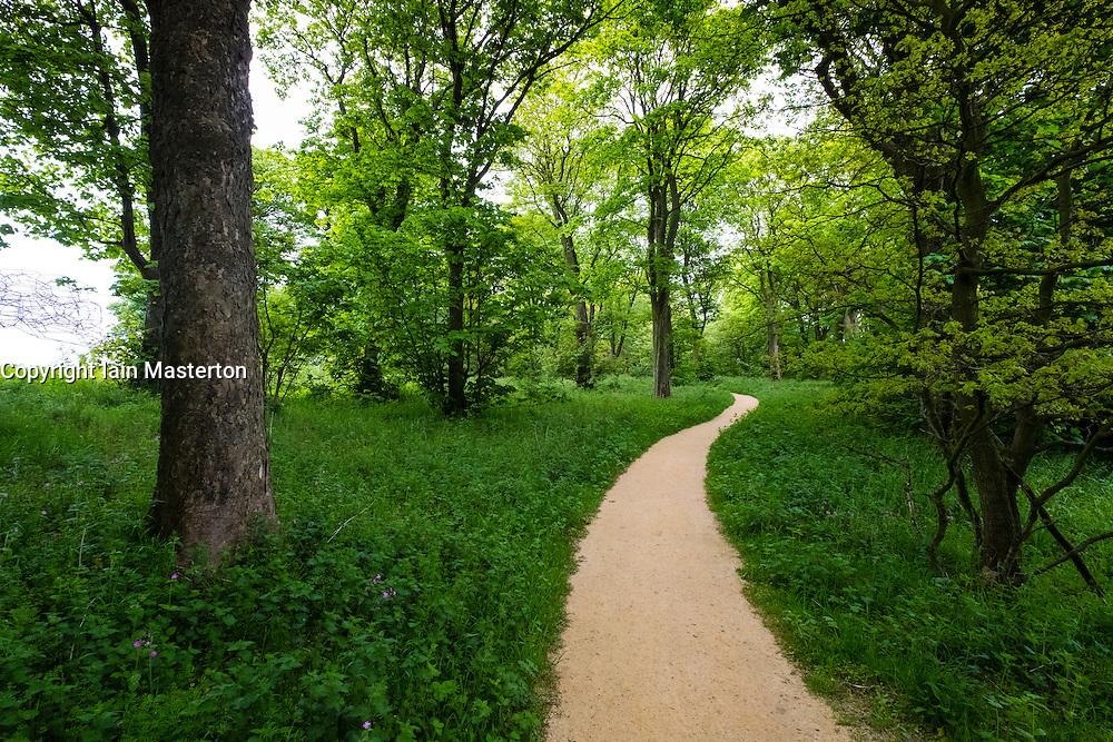 Woodland path at Jupiter Artland outside Edinburgh , Scotland , United Kingdom