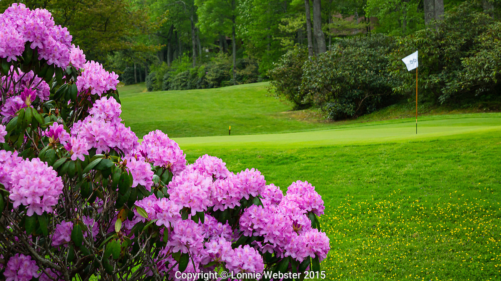 Blowing Rock in the Spring