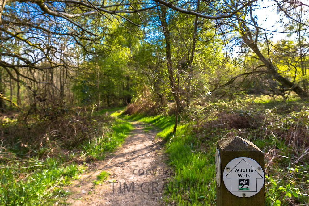Nature trail with wildlife walk signpost in woodland scene at Bruern Wood in The Cotswolds, Oxfordshire, UK