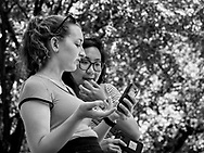 Girlfirends sharing a cell phone moment in Central Park.