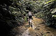 Guyane fran&ccedil;aise, boca do jacare, crique Ipoussing.<br /> Zone d'activite aurifere clandestine bresilienne. Les pirogues assurent le ravitaillement de marchandises et des hommes depuis Oiapoque.<br /> Un reseau de pistes permet aux porteurs d'alimenter la foret.<br /> On estime que 300 Kg d'or clandestins sont vendus chaque mois dans les comptoirs bresiliens frontaliers. <br /> La prefecture pretend arreter cette activitvite et mene quelques actions coup de poing en envoyant les gendarmes dans le cadre d'operations &sbquo;dites anaconda . D'importants stocks de materiel clandestins ont ete saisis et brules depuis le debut de l'offensive prefectorale. Contrairement aux militaires francais, les clandestins sont chez eux en foret et les campements reapparaissent a peine detruits. Quand les gendarmes restent trop longtemps sur place, les bordels bresiliens s'installent et calment les ardeurs.