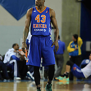Westchester Knicks Forward Thanasis Antetokounmpo (43) walks on to the court in the first half of a NBA D-league regular season basketball game between the Delaware 87ers and the Westchester Knicks (New York Knicks) Sunday, Dec. 28, 2014 at The Bob Carpenter Sports Convocation Center in Newark, DEL