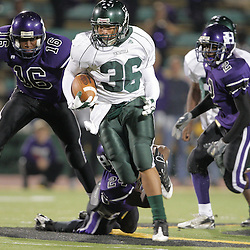 07 November 2008: Ponchatoula Green Wave RB Joseph Green (#36) The Ponchatoula Green Wave defeated District 7-5A rival the Hammond Tornados 34-13 at Strawberry Stadium in Hammond, LA . The Green Wave with the win clinched a spot in the 2008 playoffs.