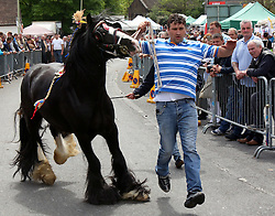 Wickham,Hampshire Friday 20th May 2016 <br /> <br /> REVELLERS and animal lovers have turned out in numbers for this year's Wickham Horse Fair. <br /> The annual event brings thousands of people to Hampshire every year to take part in horse-related activities. <br /> Roads in the village are closed throughout the day and authorities are working together to ensure the event is successful. <br /> Supt Alison Heydari said: &ldquo;This event is steeped in history and we have been working closely with&nbsp;Hampshire County Council, Winchester City Council, Wickham Parish Council and other agencies to help maintain a safe&nbsp;environment&nbsp;for visitors and residents to enjoy the day. <br /> &ldquo;If you are planning to attend the horse fair please familiarise yourself with the road closure and parking arrangements and plan for your journey and attendance accordingly. <br /> <br /> &quot;These arrangements have been made to keep disruption and inconvenience to local people and motorists to a minimum. <br /> &ldquo;There will be officers in high visibility uniform available throughout the event to respond to any issues that may arise.&rdquo; @UKNIP