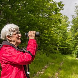 A woman birdwatching in the new Bethel Community Forest in Bethel, Maine.
