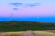 """The Full Moon of August 31, 2012 (which was a """"Blue Moon"""" -- i.e. the second Full Moon of the month) rising over a harvested field, with windmills of the Wintering Hill wind farm. The pink Belt of Venus band is visible above the blue band above the horizon that is Earth's shadow. This is a 6-exposure HDR stack taken with the Canon 7D at ISO 100 and 16-35mm lens. Metered exposures."""