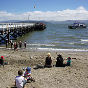 People relaxing along the beachfront at Eastbourne. New Zealand...Eastbourne, New Zealand. An outer suburb, it is situated on the eastern shore of Wellington Harbour, 5 kilometres south of the main Lower Hutt urban area, and directly across the harbour from the Miramar Peninsula in Wellington city. It is reached from Lower Hutt by a narrow exposed coastal road via the industrial suburb of Seaview. It comprises some 2000 residential homes spread over the seven main small bays of Point Howard, Lowry Bay, York Bay, Mahina Bay, Days Bay, Rona Bay and Robinsons Bay, although only the last two are commonly considered part of Eastbourne itself. There are also two smaller bays; Sunshine Bay and Sorrento Bay. Eastbourne, New Zealand.  25th January 2011. Photo Tim Clayton.