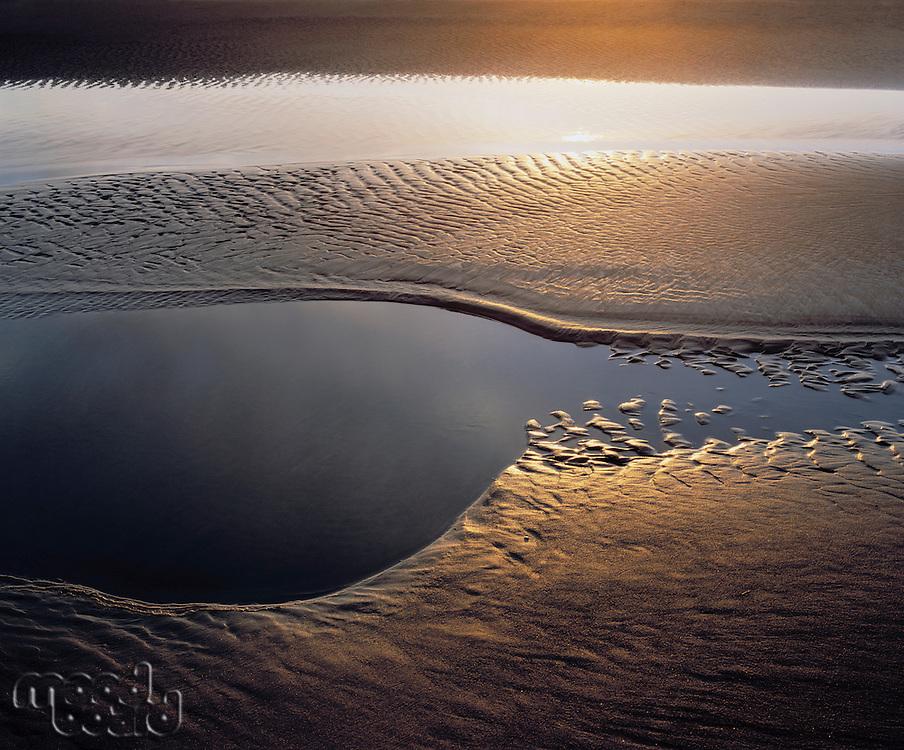 Sunlight on tidal flats