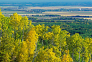 Deciduous forest in autumn overlooking farmland, Riding Mountain National Park, Manitoba, Canada