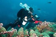 Divers & Children