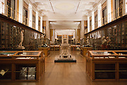 The Kings library gallery at the British Museum was one of the most important collections of books of its time.