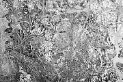 The Dambadeniya Rajamaha Vihara. detail from wall on top floor of shrine room.