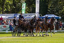 Geerts Glenn, BEL, Birckhouse Billie, Dash, De Solist, Erdball, Zeron<br /> Donaueschingen - CHI mit Europameisterschaft Gespannfahren 2019<br /> Dressage Four-in-hand horses Driving European Championship<br /> Vierspänner Dressur<br /> 16. August 2019<br /> © www.sportfotos-lafrentz.de/Dirk Caremans