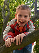Children playing, Laith climbs tree, excited