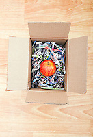 Apple wrapped up in a box