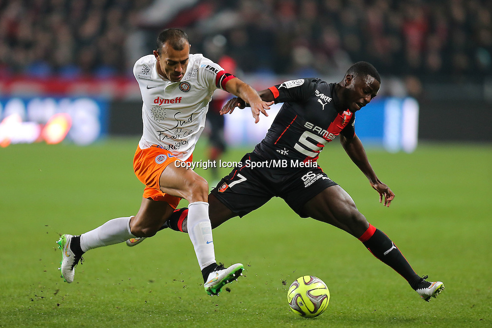Paul Georges NTEP / HILTON - 06.12.2014 - Rennes / Montpellier - 17eme journee de Ligue 1 -<br />
