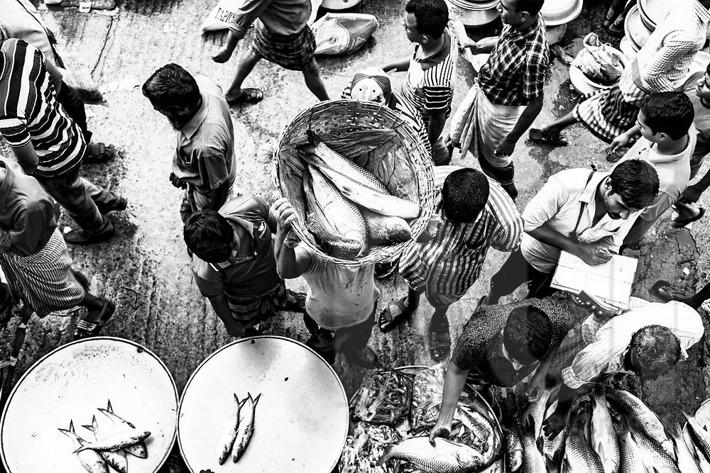 Fish market in Karwan Bazar, Dhaka, Bangladesh, Asia