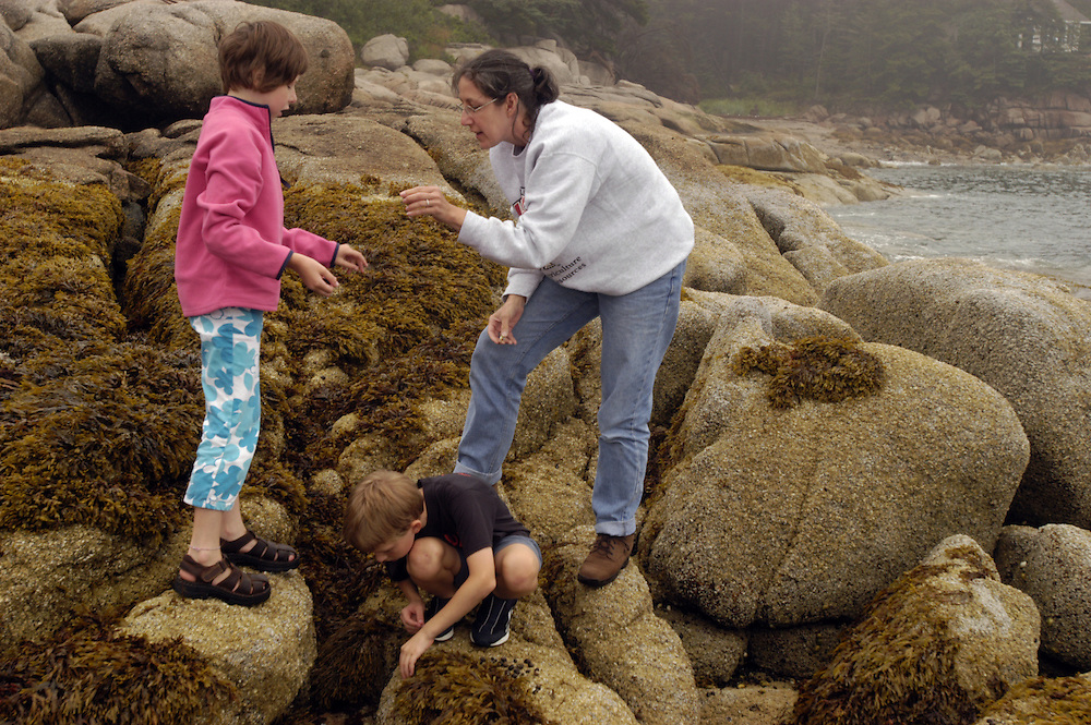 Children exploring tide pools, Deer Isle Maine