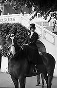 RDS Horse Show. Percy French, owned by Phyllis Rohan and ridden side-saddle by Mercedes Punch awaiting her turn to enter the judging ring for the Ladies Hunter Classes..08.08.1963