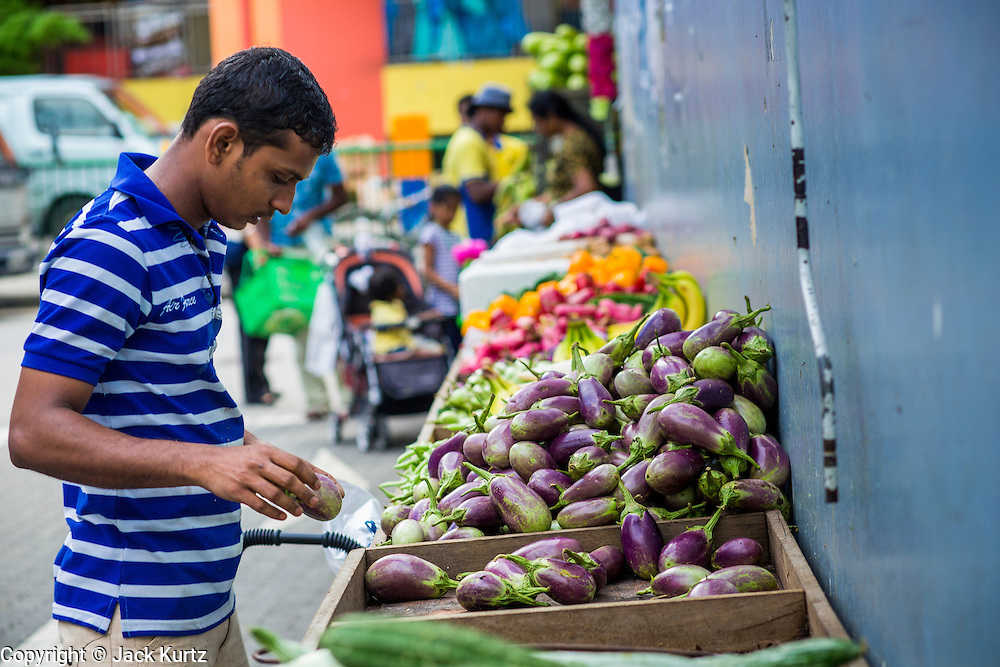 21 DECEMBER 2012 - SINGAPORE, SINGAPORE:    A man looks at eggplant at a vegetable stand in the Little India section of Singapore.    PHOTO BY JACK KURTZ