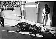 The 61st Temporada Taurina (bullfighting season) in Manizales, Colombia.