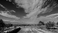 """A Sud, pochi kilometri sulla litoranea salentina, alle spalle del recente passato brindisino, dove le strade cedono la vista ai campi e il frastagliare degli edifici e  delle torri si acquieta, a restituire all'animo un respiro, lì c'è Anna: un sollievo, un'oasi serena. Qui Anna vive e lavora con la sua famiglia, a ridosso del parco regionale delle terre del sale, strategico sito per le rotte degli uccelli che ogni anno migrano dal Nord Africa al vecchio continente... È qui che Anna gode della sua vita.. è qui che vibra incessante di gioia ed energia traboccante a realizzare i suoi sogni con una determinazione esemplare....Anna non sta mai ferma, ha sempre qualcosa da fare... ora pianta cardi, ora imbianca e un attimo dopo striglia i suoi splendidi cavalli.... ancora un po' e la vedi che raccoglie olive... e fino alle due di notte a costruire un carretto per esporre i suoi prodotti... .Tutto questo sempre sorridente e ricca... grandemente ricca di vita!.Nella sua fattoria ha trasformato una stalla in un'aula didattica per progetti di educazione ambientale destinati ai bimbi... e non solo, offre servizi gratuiti per chi vuole visitare il parco e ha messo su una vendita diretta per far gustare i suoi prodotti rigorosamente naturali, coltivati con acqua e null'altro; al massimo un po' di concime che """"comu lu letame dilli cavaddi non ci nd'eti""""..Ma il suo sogno... il suo sogno è quello di dar vita a un maneggio... per questo ha già 7 magnifici cavalli... al mattino li fa uscire per i campi e alla sera, con un fischio... li vedi da lontano che tornano al galoppo... uno spettacolo di quelli senza fiato... Anna è convinta che i suoi cavalli sognano... e che fanno sogni belli... se ne accorge dal nitrito quando la notte va in stalla e li contempla... vuole bene a tutti e """"guai a chi me li tocca""""... da Caliostro a Michelle, Draga, Arbusto, Giulio, Ventura, Cesare... ma  poi si lascia scappare... """"il mio preferito è Arbusto..."""" un murgese rustico e massiccio... lo accompagna"""