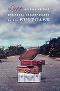 Love arrives without practical deliberations in its suitcase