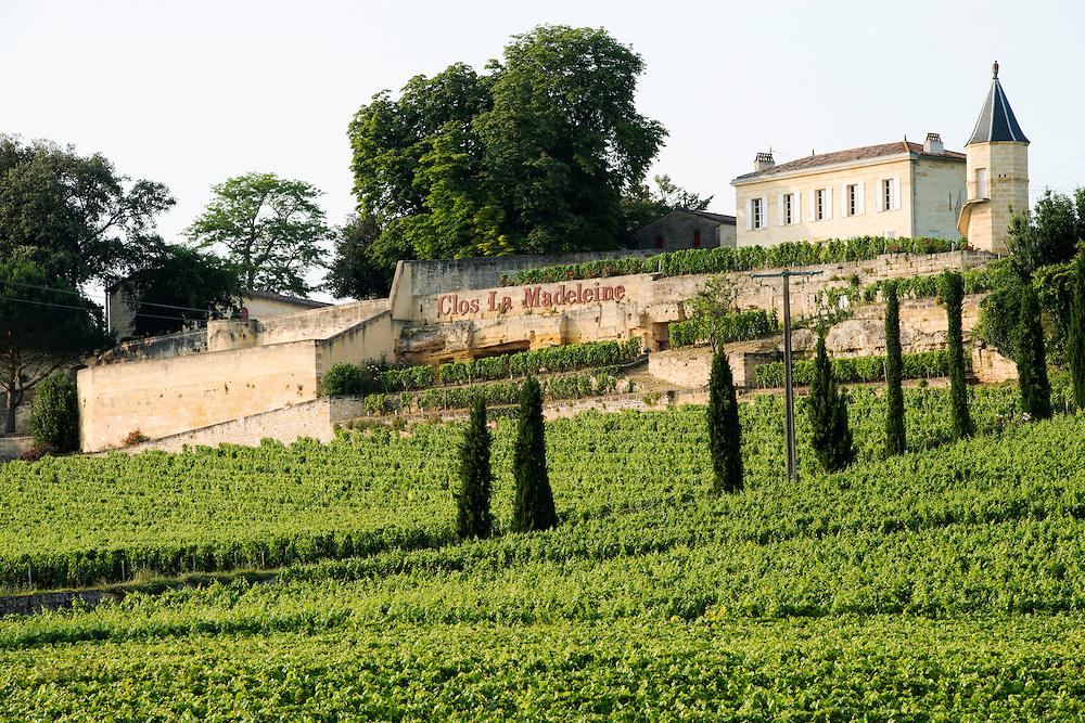 FRANCE, Saint Emilion<br /> Clos La Madeleine (Grand Cru) and its vineyards