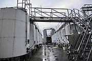 Israel, Golan Heights, winery, fermentation vats