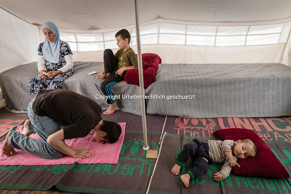 Greece, Lagkadikia, Refugee Camp, Judi, age 15, is praying inside the family tent, while his brother Abdulla is sleeping and his mother is sitting in the tent with his brother Shahin. Hayfa Sadiq, age 34, is staying in this camp since end April 2016 with her five boys age between 1,5 and 15. Judi, age 15, Mohamad, age 12, Shahin, age 9, Abdul Rahman, age 6, Abdulla, age 1,5. Her husband, Mazkin, age 42, and father of the kids, is living in Berlin, Germany. He is accepted as refugee seeking asylum. They family is form Haseki, North Syria.