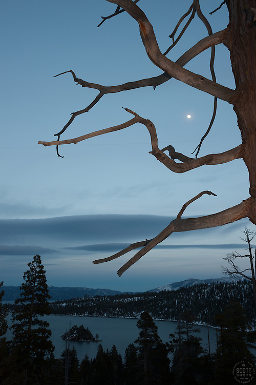 """Moon Over Emerald Bay 1"" - This moon and tree were photographed in the evening at Emerald Bay, lake Tahoe."