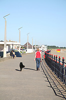 Woman walking a dog on  Bray Promenade County Wicklow Ireland