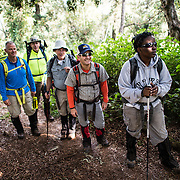 A group of hikers on the Lemosho Trail climbing Mt Kilimanjaro in Tanzania. Kilimanjaro is Africa's highest mountain.