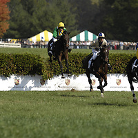 20 October 2007:  Postnuptial with jockey Carl Rafter up leads When The Saints with Christopher Read up and Ghost Bar with William Santoro over a National fence as they compete in the $25,000 Fidelity Cup during the 70th running of the International Gold Cup Races on October 20, 2007 at the Great Meadow in The Plains, Va.  The race was won by When The Saints (1) ridden by Christoper Read with Classy Brute (3) ridden by Will Haynes and Ghost Bar (2) with William Santoro aboard finishing 2nd and 3rd.