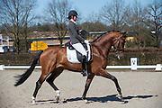 Laura Zwart - Lumen Dylan<br /> Selectie WK Jonge Dressuurpaarden 2013<br /> © DigiShots