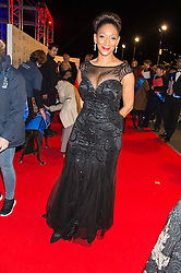 Singer DEBBIE SLEDGE from Sister Sledge at the Battersea Dogs & Cats Home's Collars & Coats Gala Ball held at Battersea Evolution, Battersea Park, London on 12th November 2015.