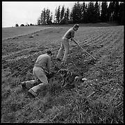 Auf dem Familienbetrieb der Alp Rämisgummen im Emmental wird Berner Alpkäse hergestellt. © Romano P. Riedo
