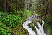 Sol Duc Falls in Olympic National Park, Washington