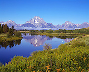 The Grand Teton mountains reflected in the still surface of the Snake River, near Moran Junction, Wyoming.