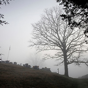 Fog enveloped a cemetery on Houschell Bend in Wild Cat, Ky., on 3/19/10. Photos by David Stephenson